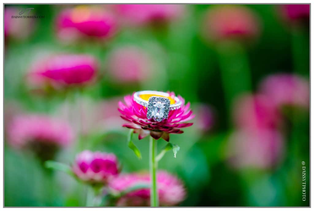 Norfolk Botanical Garden flower and ring